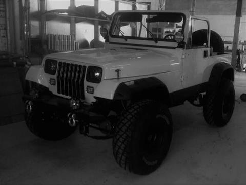 1995 Jeep Wrangler for sale in Cadillac, MI