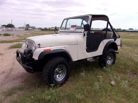 1975 Jeep CJ-5 for sale in Cadillac, MI