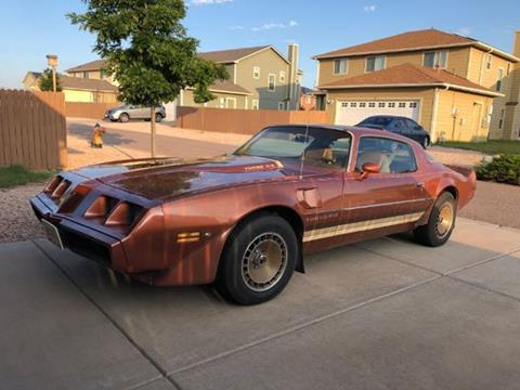 1980 Pontiac Firebird for sale in Cadillac, MI
