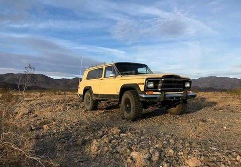 1980 Jeep Cherokee for sale in Cadillac, MI