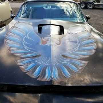 1979 Pontiac Trans Am for sale in Cadillac, MI