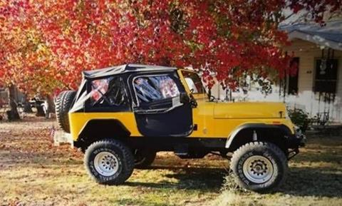 1978 Jeep CJ-7 for sale in Cadillac, MI