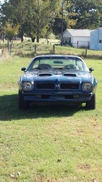 1976 Pontiac Firebird for sale in Cadillac, MI