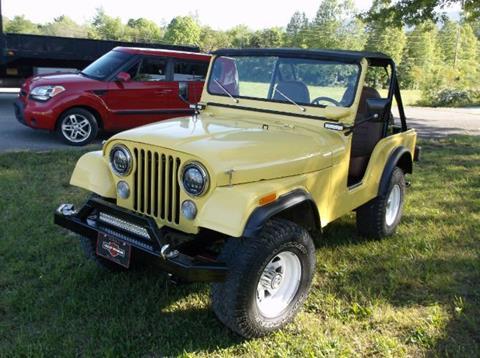 1974 Jeep CJ-5 for sale in Cadillac, MI