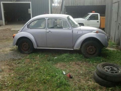 1974 Volkswagen Beetle for sale in Cadillac, MI