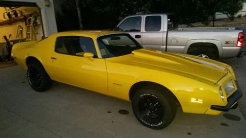 1974 Pontiac Firebird for sale in Cadillac, MI