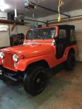 1963 Jeep Willys for sale in Cadillac, MI