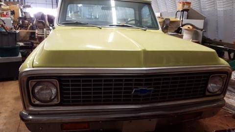 1971 Chevrolet C/K 10 Series for sale in Cadillac, MI
