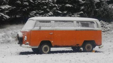 1969 Volkswagen Bus for sale in Cadillac, MI