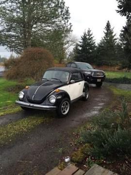 1978 Volkswagen Super Beetle for sale in Cadillac, MI
