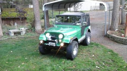 1974 Jeep CJ-5 for sale in Cadillac, MI