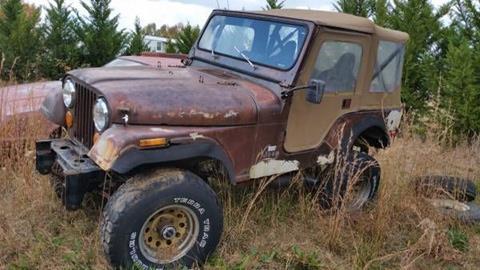 1978 Jeep CJ-5 for sale in Cadillac, MI