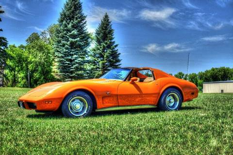 1977 Chevrolet Corvette for sale in Watertown, MN