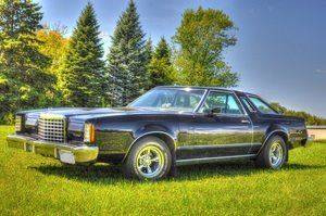 1977 Ford Thunderbird  - Watertown MN