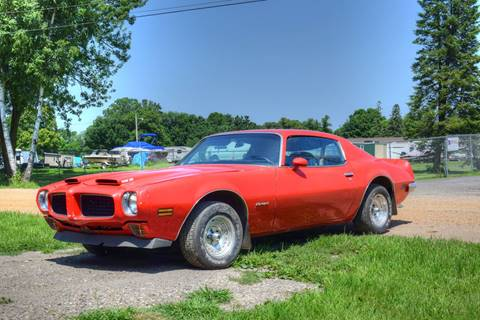 1973 Pontiac Firebird Trans Am for sale at Hooked On Classics in Watertown MN