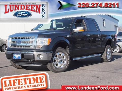 2014 Ford F-150 for sale in Annandale MN