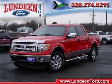 2014 Ford F-150 for sale in Annandale, MN