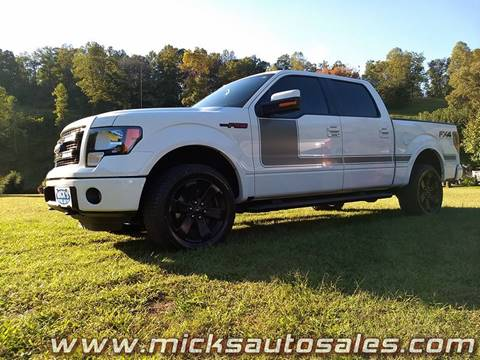 2013 Ford F-150 for sale in Staffordsville, KY