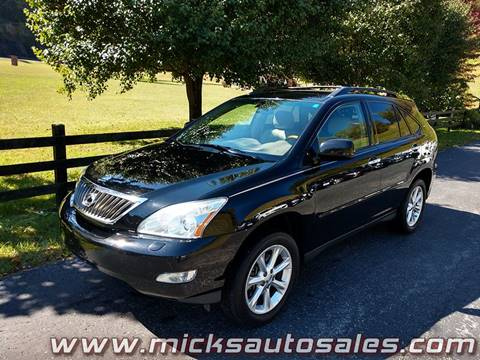 2009 Lexus RX 350 for sale in Staffordsville, KY