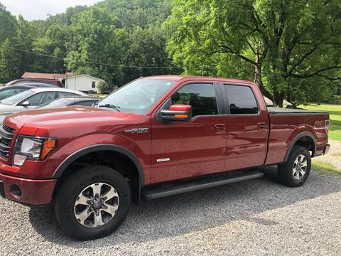 2014 Ford F-150 for sale in Little Birch, WV