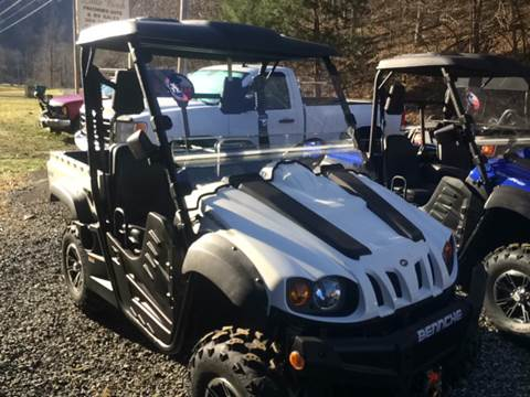 2017 Bennche Bighorn 500 for sale in Little Birch, WV