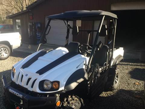 2017 Bennche Bighorn 700 for sale in Little Birch, WV