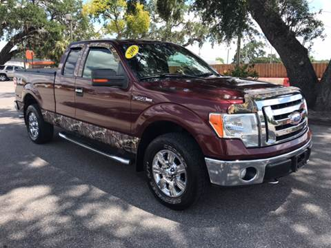 2009 Ford F-150 for sale at Go Smart Car Sales LLC in Winter Garden FL