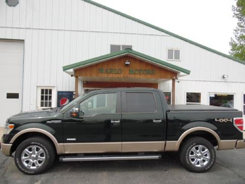 2014 Ford F-150 for sale in Perham, MN