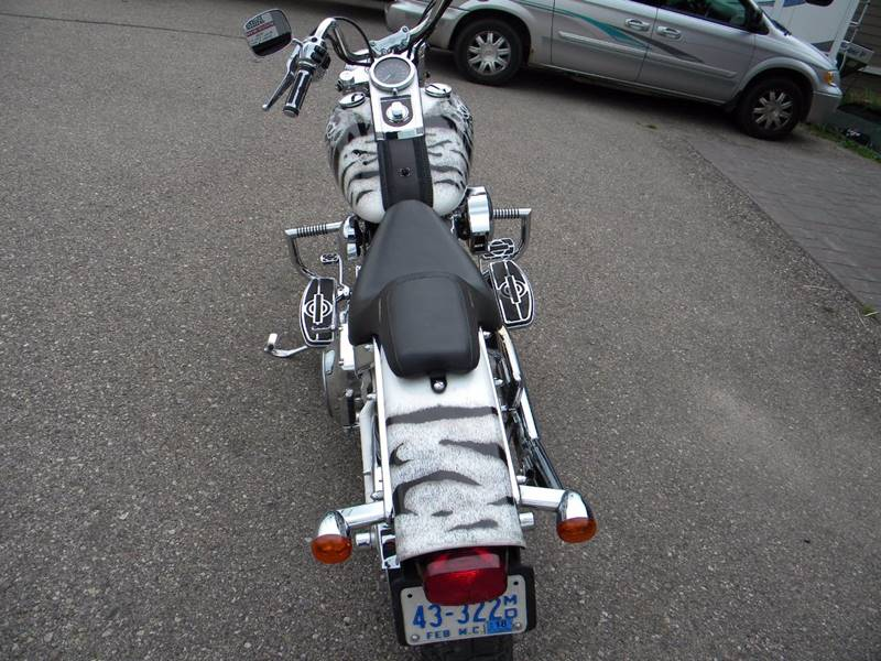 2001 Harley-Davidson Thunder Mountain Custom Soft Tail Custom - Hayward MN