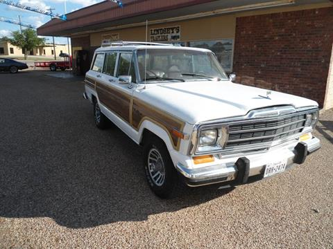 1989 Jeep Grand Wagoneer for sale in Gatesville, TX