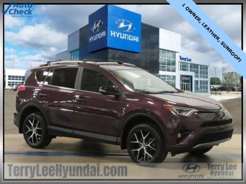 2017 Toyota RAV4 for sale at Terry Lee Hyundai in Noblesville IN