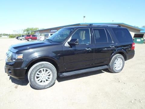 2014 Ford Expedition for sale in Crookston MN