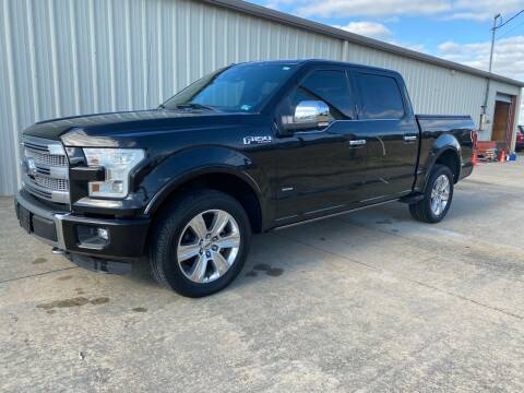 2015 Ford F-150 Platinum for sale at Freeman Motor Company in Lawrenceville VA
