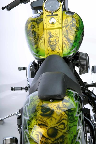 2005 Harley Davidson Softail (image 6)
