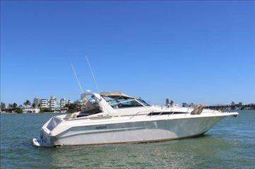 1991 Sea Ray Sundancer    Call(561)573-4196