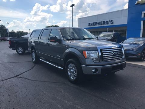 2011 Ford F-150 for sale in Rochester, IN
