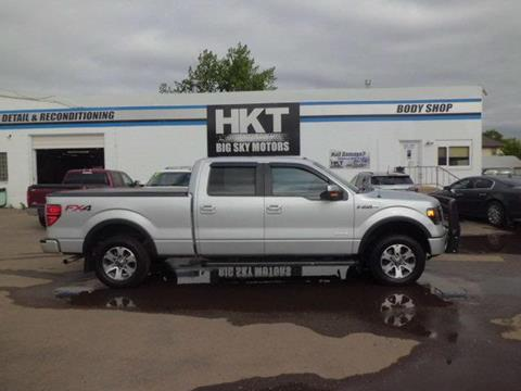2013 Ford F-150 for sale in Glendive MT