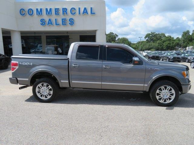 2010 Ford F-150 for sale at Derek Montalvo at Mullinax Ford in Mobile AL