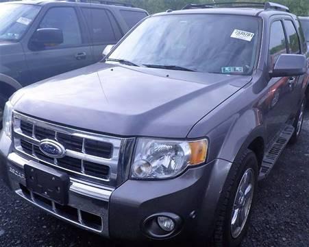 2010 Ford Escape for sale at Progress Auto Sales in Durham NC