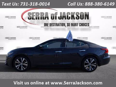 2017 Nissan Maxima for sale at Serra Of Jackson in Jackson TN