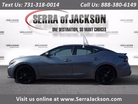 2019 Nissan Maxima for sale at Serra Of Jackson in Jackson TN