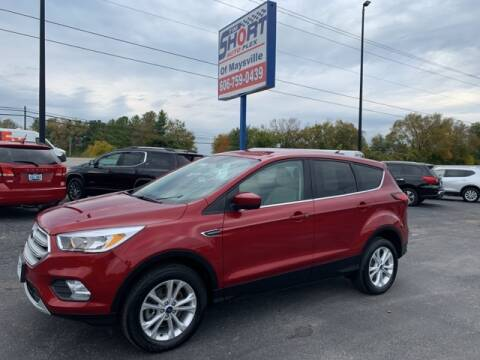 2019 Ford Escape for sale at Tim Short Chrysler in Morehead KY