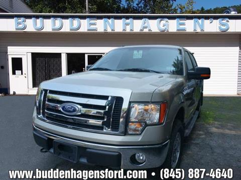 2010 Ford F-150 for sale in Hortonville, NY