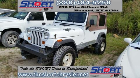 1994 Jeep Wrangler for sale in Mallie, KY