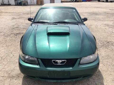 2001 Ford Mustang for sale at RABI AUTO SALES LLC in Garden City ID
