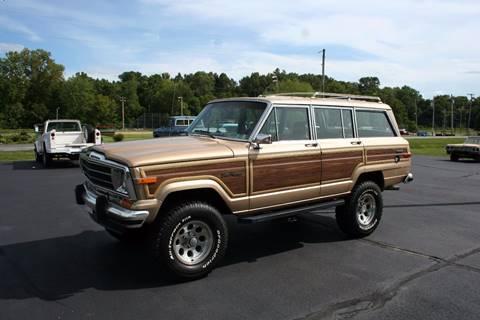 1989 Jeep Grand Wagoneer for sale in Jonesboro, IL