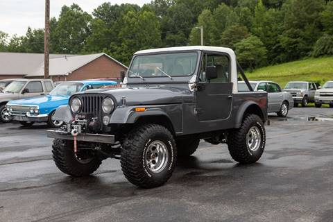 1979 Jeep CJ-7 for sale in Dongola, IL