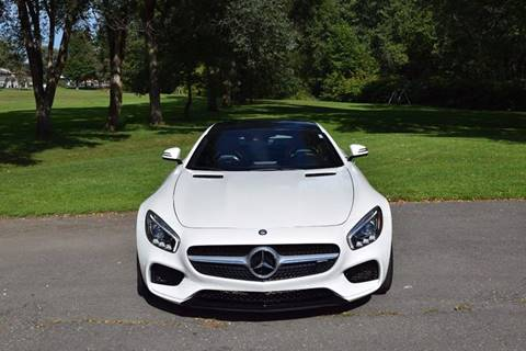 2016 Mercedes-Benz AMG GT for sale in Endicott, NY