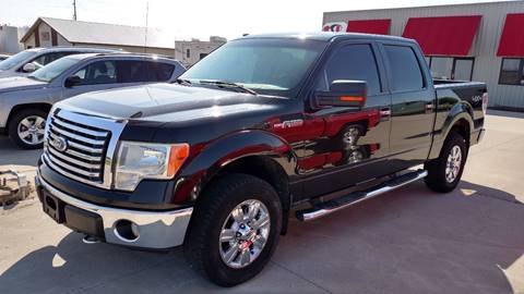 2010 Ford F-150 for sale at G & S Auto Sales in Milbank SD