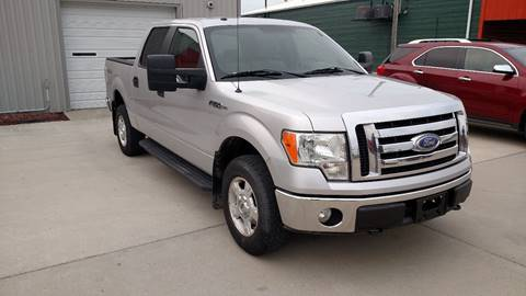 2009 Ford F-150 for sale at G & S Auto Sales in Milbank SD